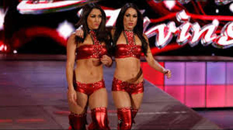 The Bella Twins Advertised For Wwe Live Events